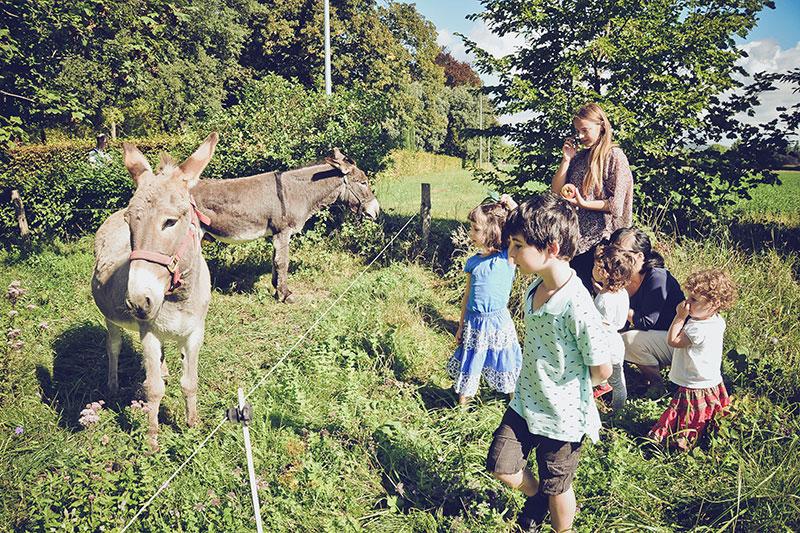 Domaine de Vincenti | Enfants visitant les ânes