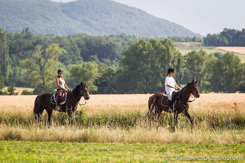 Domaine de Vincenti | Balades à cheval