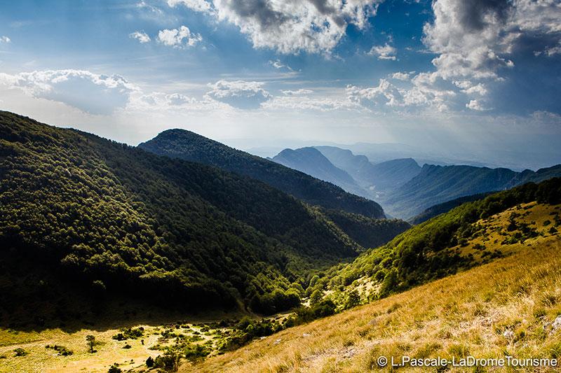 Domaine de Vincenti | Montagne Saou